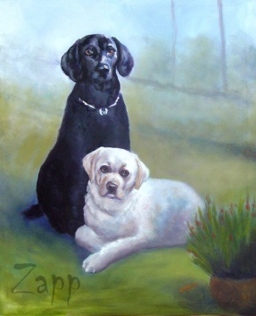 Dogs Black and White Pets